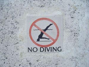 edd_miami_diving.jpg