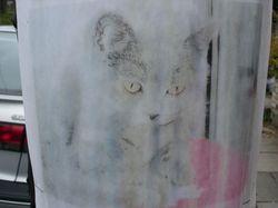 https://www.funkypancake.com/blog/stuff3/2006/07/DSC00545-thumb.jpg