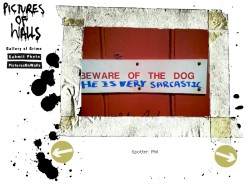 sarcastic dogs.jpg